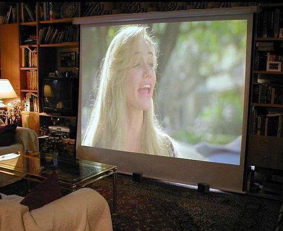 lichtbildwand leinwand f r projektor r ckprojektionsfolie deckenmontage deckeneinbau mobile. Black Bedroom Furniture Sets. Home Design Ideas